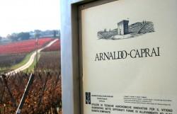 Wine Pleasures Workshop Assisi Buyer meets Italian Cellar