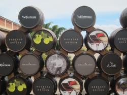 Vallformosa 50 Great Cavas 2012 - a Wine Pleasures visit