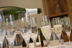 50 Great Cavas wine tour