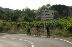 Wine Pleasures wine country bike tour