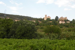 Wine country bike tour Sant Marti Sarroca