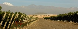 Finca Sophenia 50 Great Sparkling Wines of the World 2013