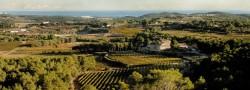 50 Great Sparkling wines Clos Lentiscus