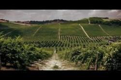 Montalbera 50 Great Sparkling wines.jpg 14