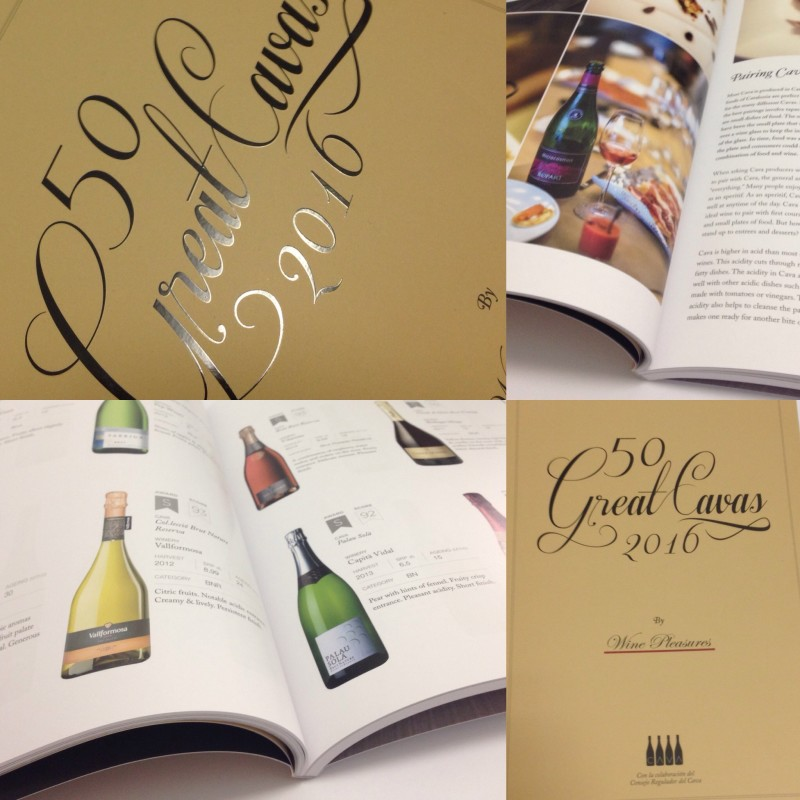 50 Great Cavas 2016 - The Book