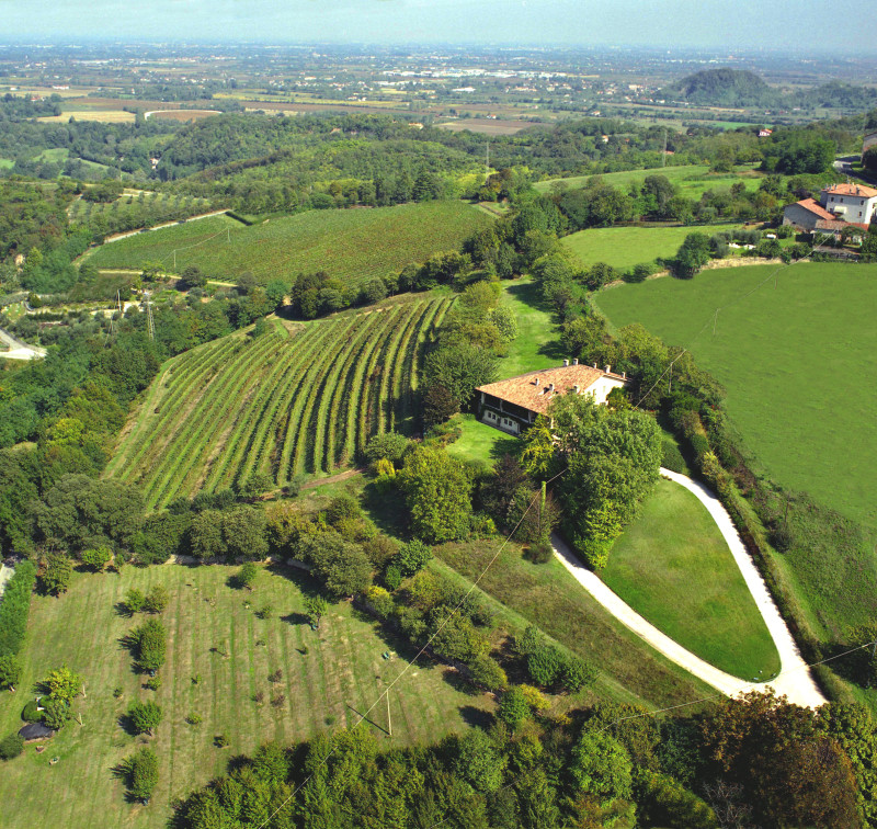 Fattoria Eolia 50 Great Sparkling Wines of the World