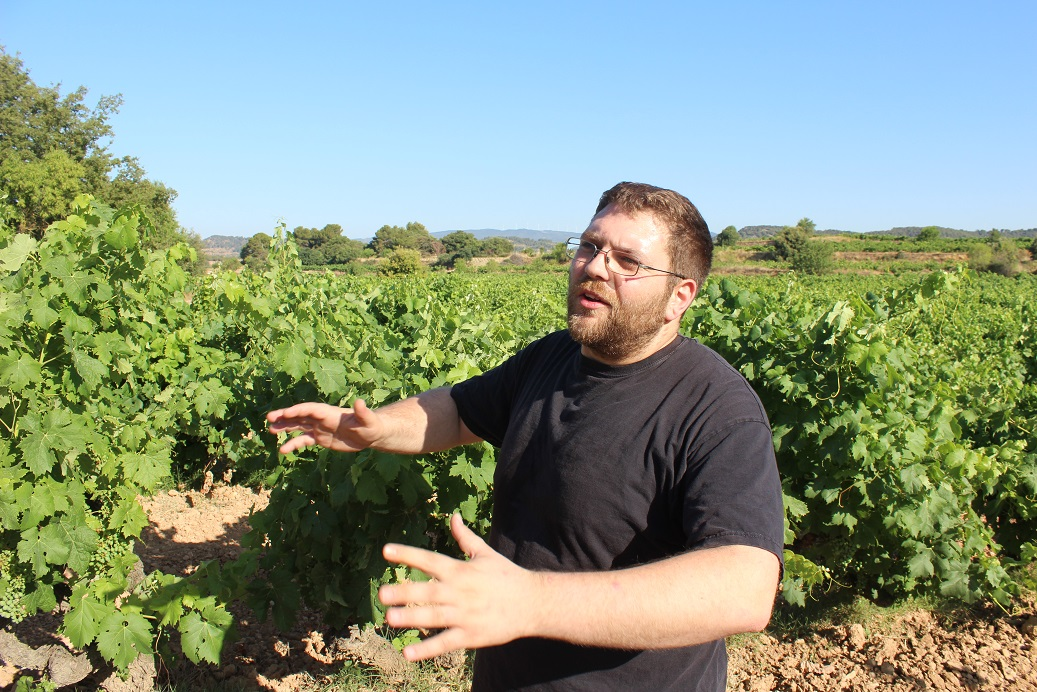 Great Cava with Indigenous Grape, Trepat by Carles Andreu