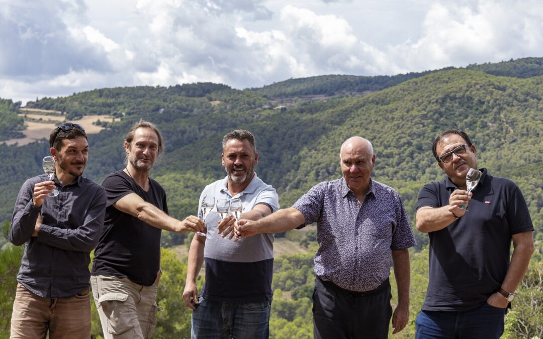 Spain's Top Cava for 2021